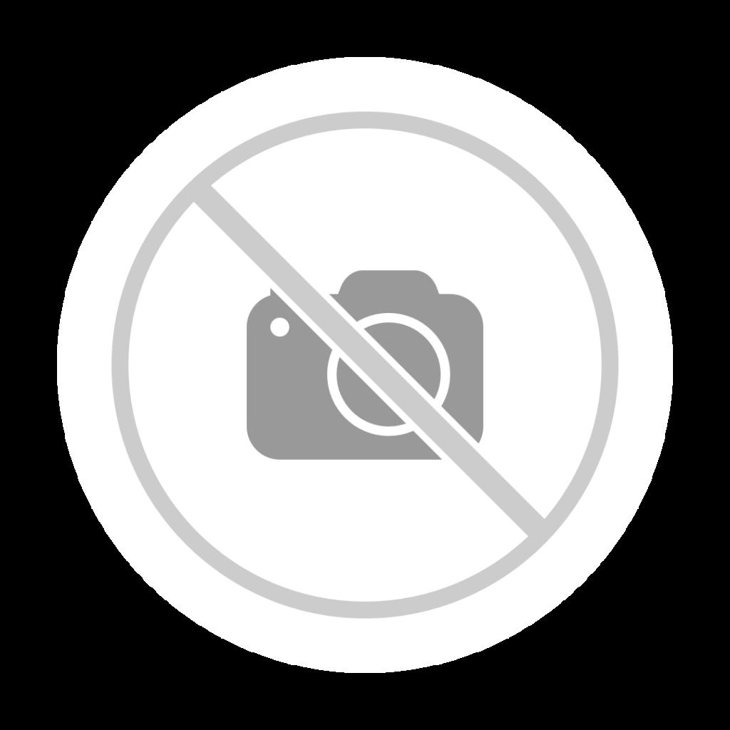 https://www.vetvice.nl/site/cache-img/1280/1024/0/true/upload/images/barn-design/Evert%2520de%2520Mots/101_1394.JPG